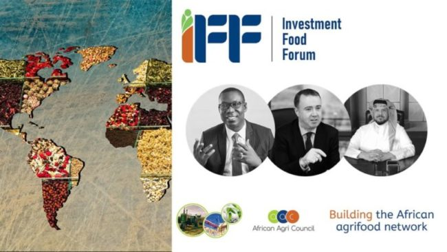 Farrelly & Mitchell executives deliver expert views at African Investment Food Forum