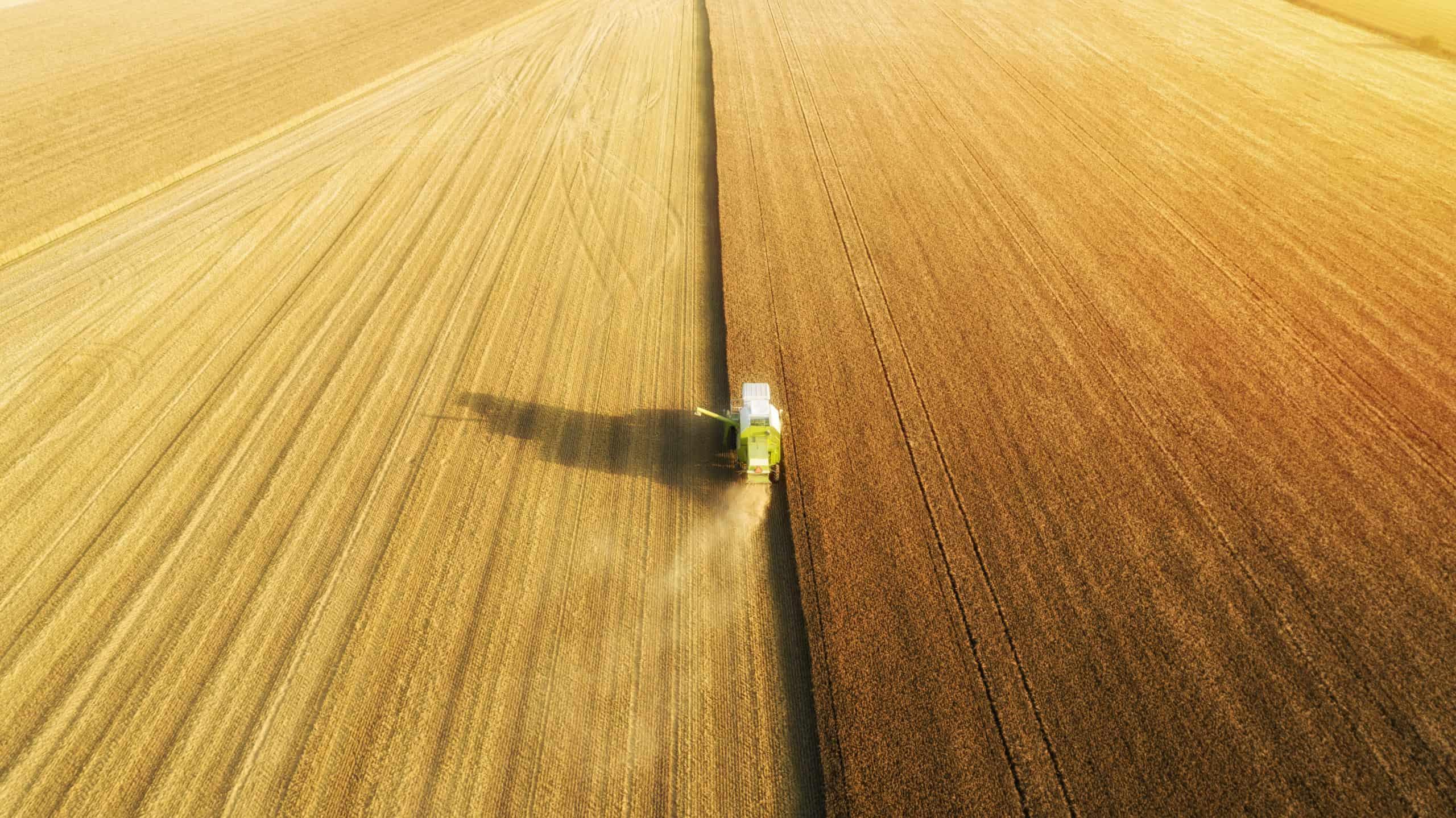 Al Rajhi International - large scale crop farming